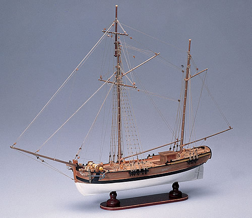 113-1408-Albion